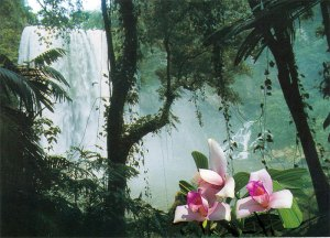 Misolha Waterfall near Palenque